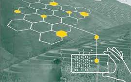La digitalización bloquea el acceso a la tierra